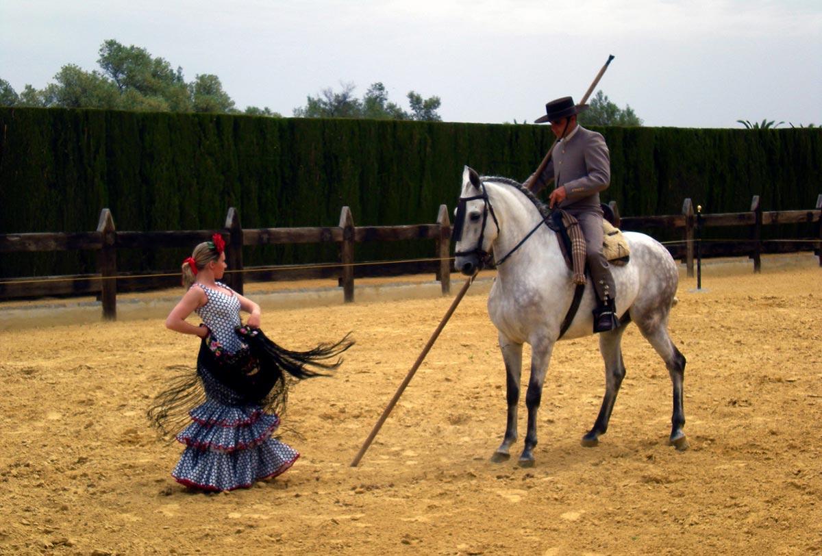 flamenca-caballo-ballemari